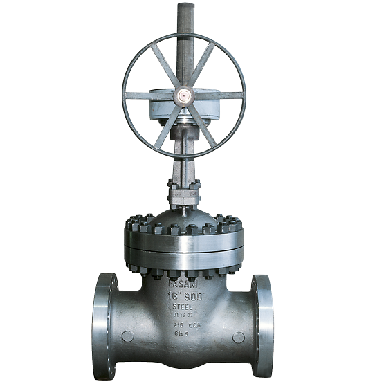 Fasani Bolted Bonnet Gate Valves