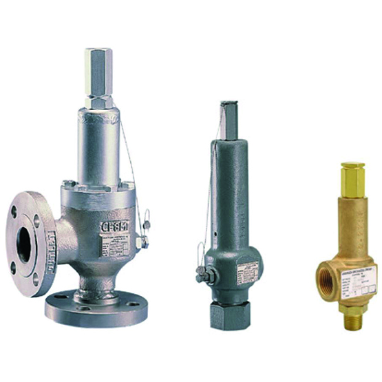 Anderson Greenwood Series Direct Spring Operated Pressure Relief Valves Series 60/80