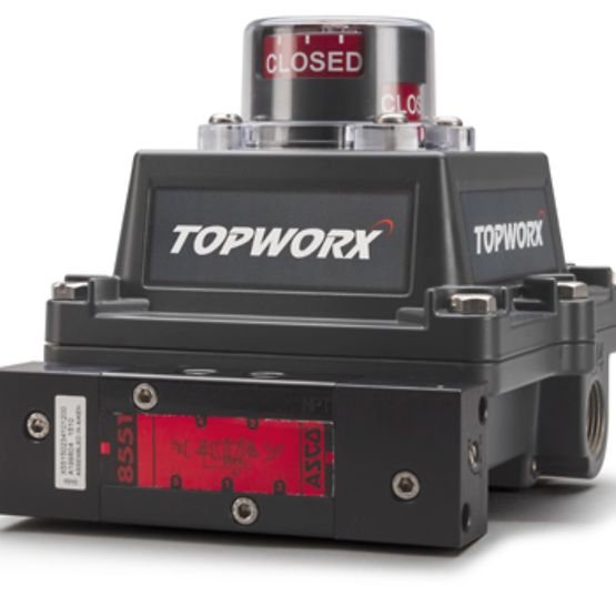 TopWorx D-ESD